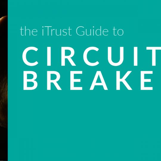 The iTrust Guide to Circuit Breakers